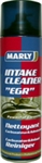 Intake Cleaner + EGR